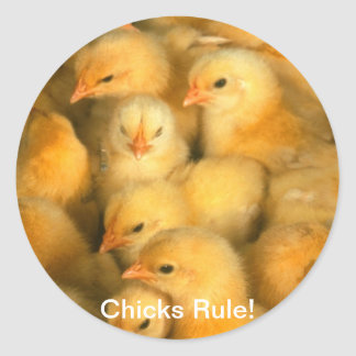 Chicks Rule! Baby Chicks Chick Chicken Chickens Classic Round Sticker