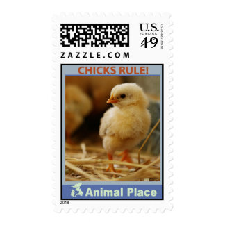 Chicks Rule Postage Stamp