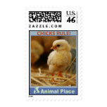 Chicks Rule Postage Stamps