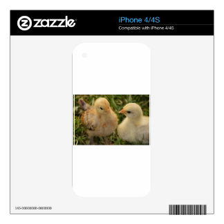 Chicks Skin For The iPhone 4