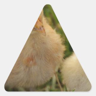 Chicks Triangle Sticker