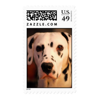 Chico Head shot Postage Stamps