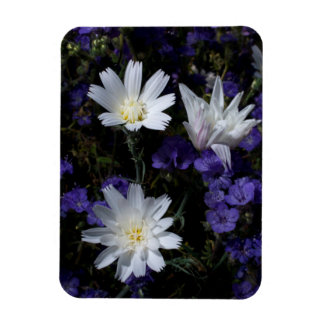 Chicory and Phacelia Wildflowers Magnet