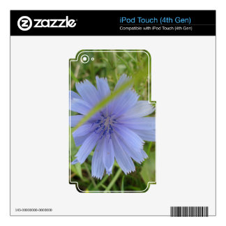 Chicory Blue Purple Flower Floral iPod Touch 4G Decals
