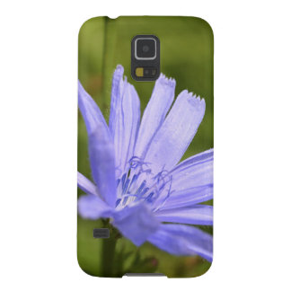 chicory case for galaxy s5