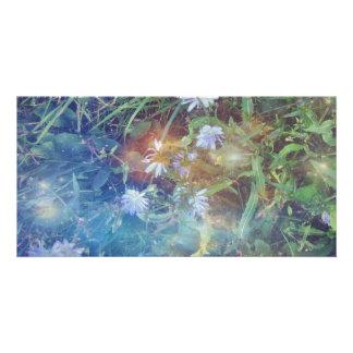 Chicory Grass Card