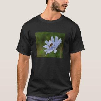 Chicory on  black tee