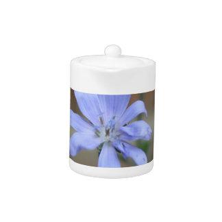 Chicory Teapot