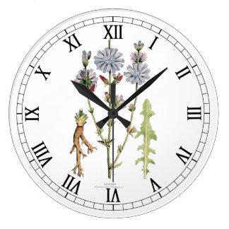 Chicory Vintage Botanical Clocks