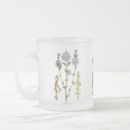 Chicory Vintage Botanical Frosted Glass Coffee Mug
