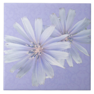Chicory Wildflower - Facing Left Tile