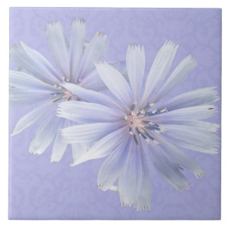 Chicory Wildflower - Facing Right Ceramic Tile