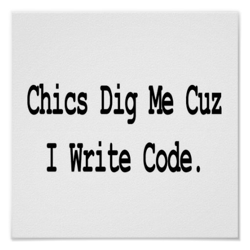 chics dig me cuz write code poster
