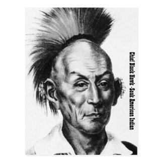 Chief Black Hawk Postcard