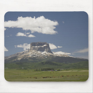 Chief Mountain With Pastures Of Grazing Cattle Mouse Pad