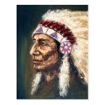 Chief,Native American Postcard