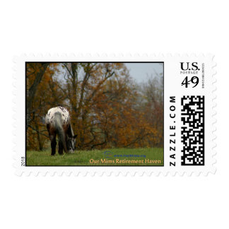 Chief Postage Stamp