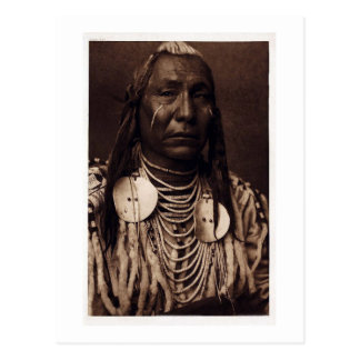 Chief Red Wing - Tatankamani - Walking Buffalo Postcard