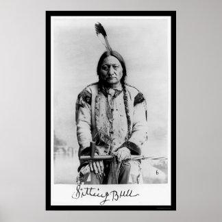 Chief Sitting Bull 1889 Poster