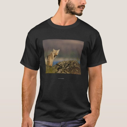 Chief Standing Bear T-Shirt