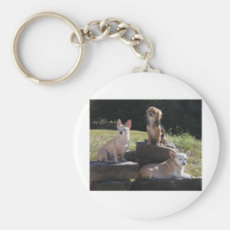 Chihuaha Rock Climbers! Basic Round Button Keychain
