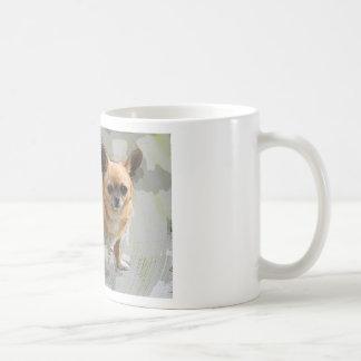 Chihuahua   チワワ  чихуахуа צ'יוואווה mug
