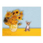 Chihuahua 1 - Girasoles Tarjetas Postales