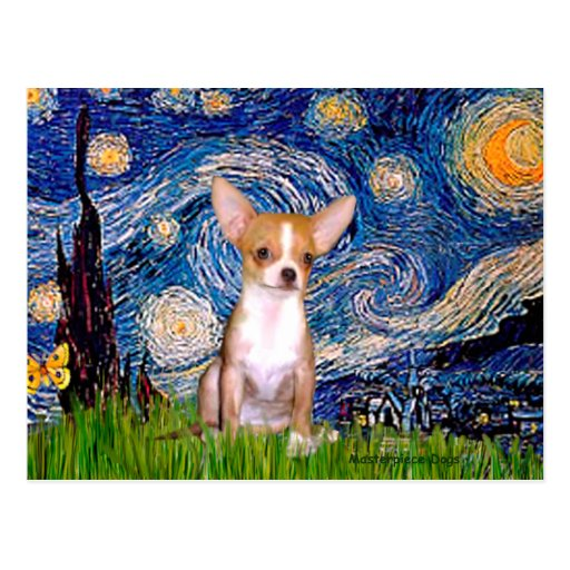 Chihuahua 1 - Starry Night Postcards