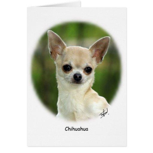 Chihuahua 9P93D-123 Felicitaciones