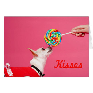Chihuahua and Lollipop Card