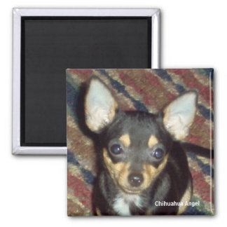 Chihuahua Angel 2 Inch Square Magnet