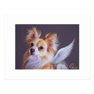 Chihuahua Angel Postcard