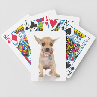 Chihuahua Bicycle Playing Cards