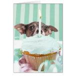 Chihuahua birthday cake card