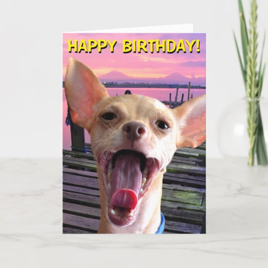 Chihuahua Birthday Card Zazzle