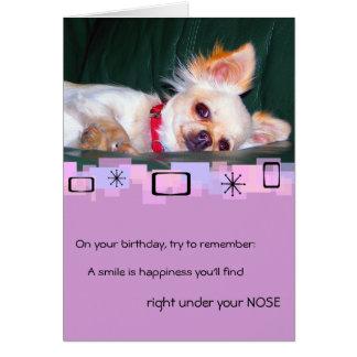 Chihuahua Birthday Greeting Card