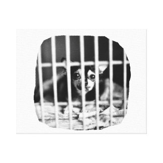 chihuahua Black and White Behind cage Bars Canvas Print