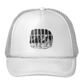 chihuahua Black and White Behind cage Bars Mesh Hat