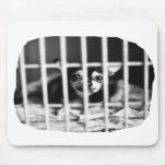 chihuahua Black and White Behind cage Bars Mouse Pad