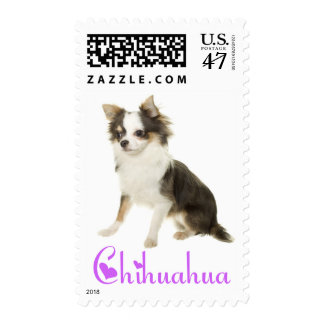 Chihuahua Black And White Puppy Dog Purple Love Postage