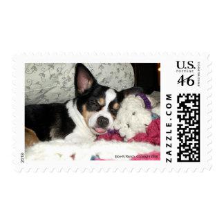 Chihuahua Blah Stamps