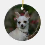 Chihuahua blanca adorno navideño redondo de cerámica