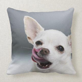 Chihuahua blanca que lame los labios almohada