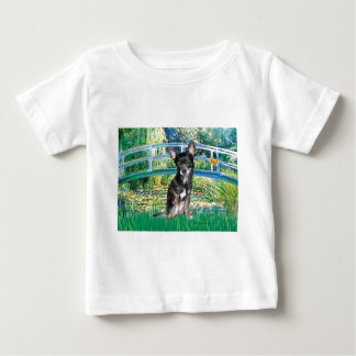 Chihuahua (blue-cream) - Bridge Shirts