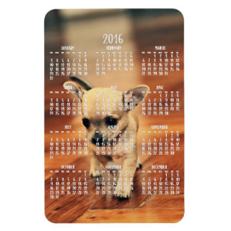 Chihuahua Calendar 2016 Photo Magnet 4x6 Large