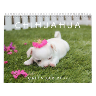 Chihuahua Calendar 2018 Add Your Photos