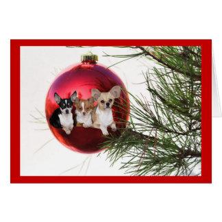 Chihuahua Christmas Card Ball
