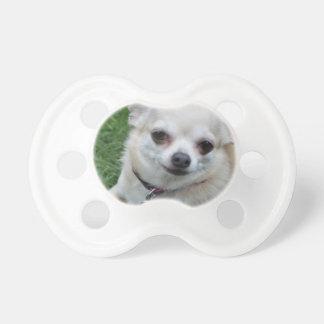 Chihuahua Chupetes Para Bebés