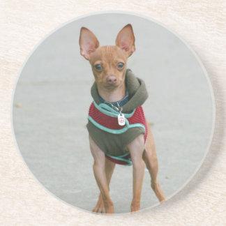 Chihuahua Coaster