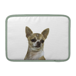 Chihuahua con actitud fundas para macbook air